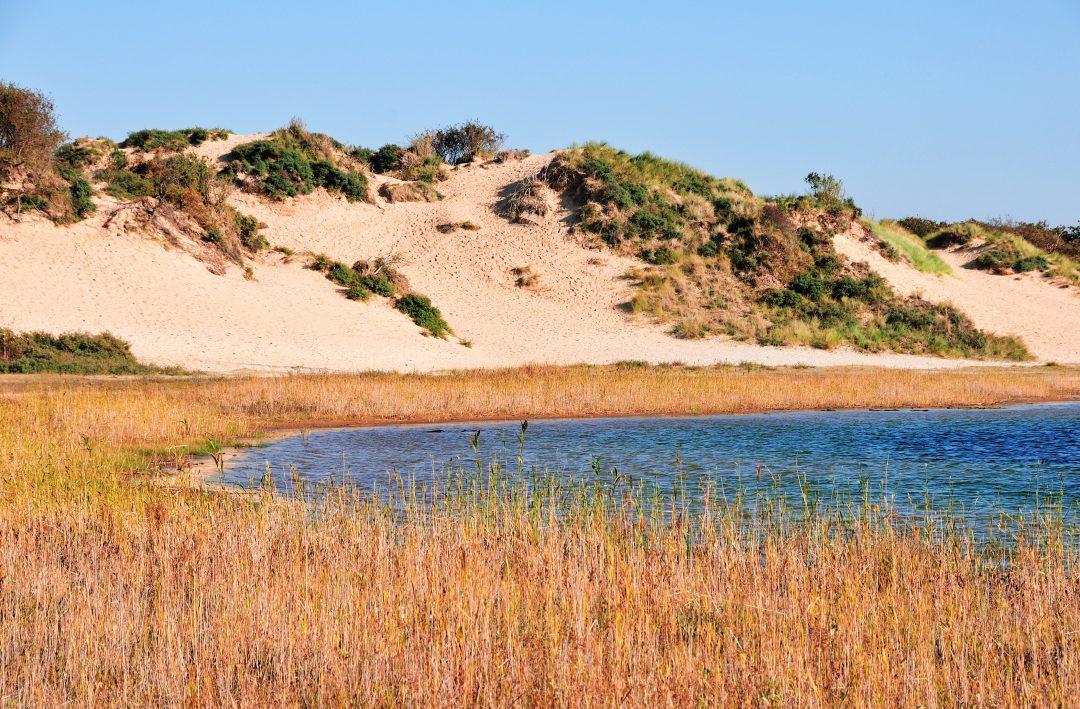Zuid Kennemerland Nationaal Park